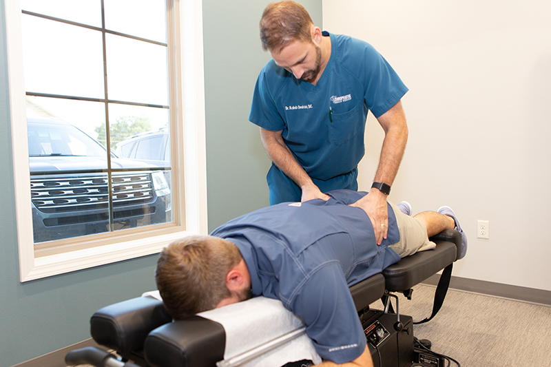 Image result for chiropractic services